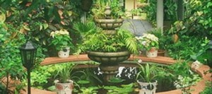 Jardines de Sitio Litre