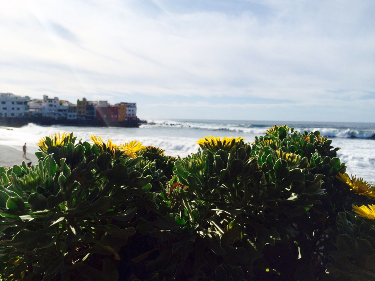 Playa Jardín. Punta Brava