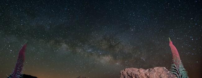 Con vistas al Universo